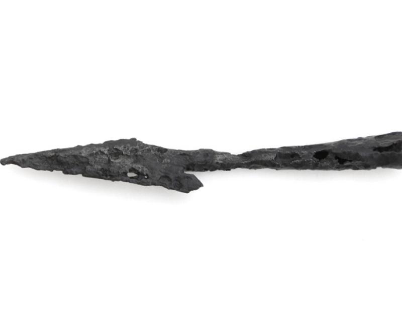 Kolekcja działu archeologii